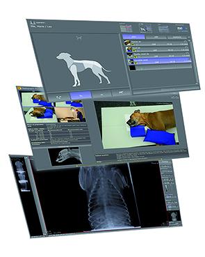Aquisitionssoftware-digitales-r-ntgenD7tGd9uyuwHLm