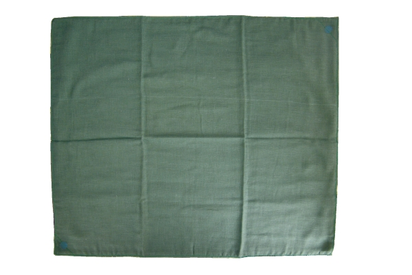 Bauchtuch Hospita grün L: 60 cm B: 50 cm 4-lagig 1 Stück
