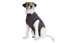 Jacketz-medical-body-Hund